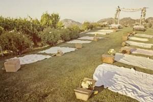 picnic_wedding_erineverafter_blogspot
